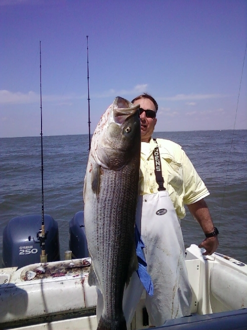 Monster 50 Plus Pounder On The Bomb Adam Bomb 5 6 And 5 7