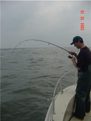 Good bite on nice fish adam bomb 10 19 for Adam bomb fishing