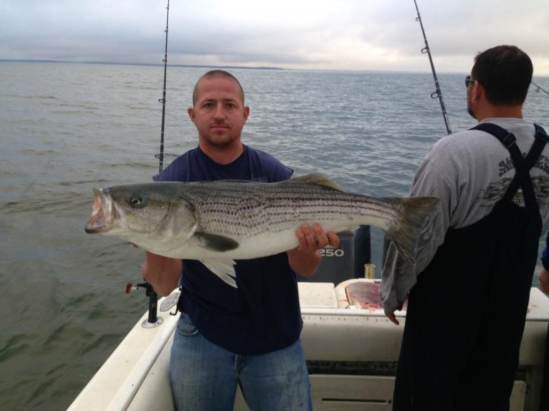 Bass fishing last two days fish to 46lbs adam bomb 5 9 for Adam bomb fishing